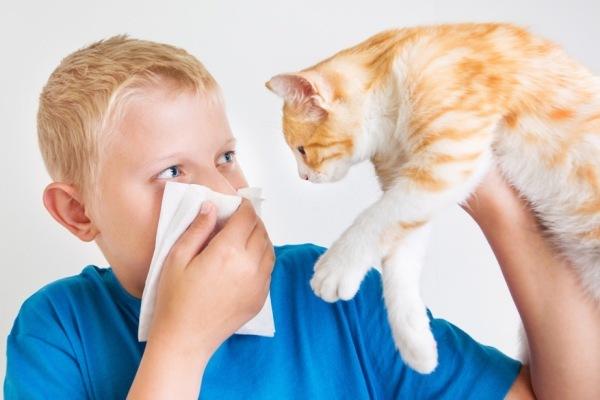 Бронхиальная астма у детей: причины возникновения