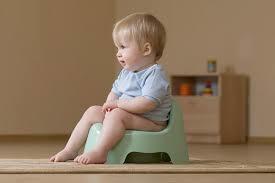 Горшок для малыша: с чего начать, как приучить, полезные советы